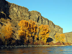 The South Fork of the Snake River
